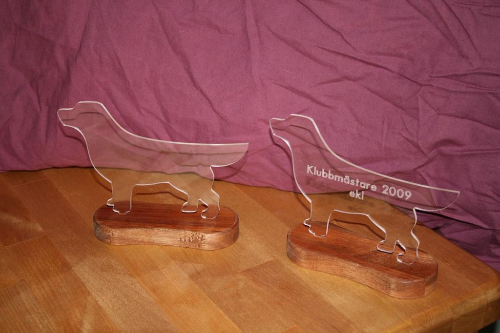 Tävlingspris i plexiglas